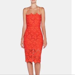 Bardot Red Lace Sheath Dress